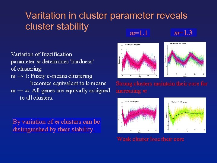 Varitation in cluster parameter reveals cluster stability m=1. 1 Variation of fuzzification parameter m