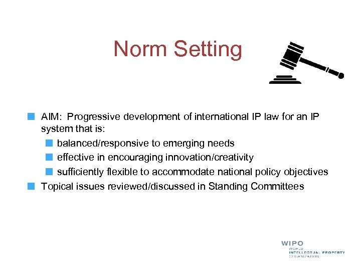 Norm Setting AIM: Progressive development of international IP law for an IP system that