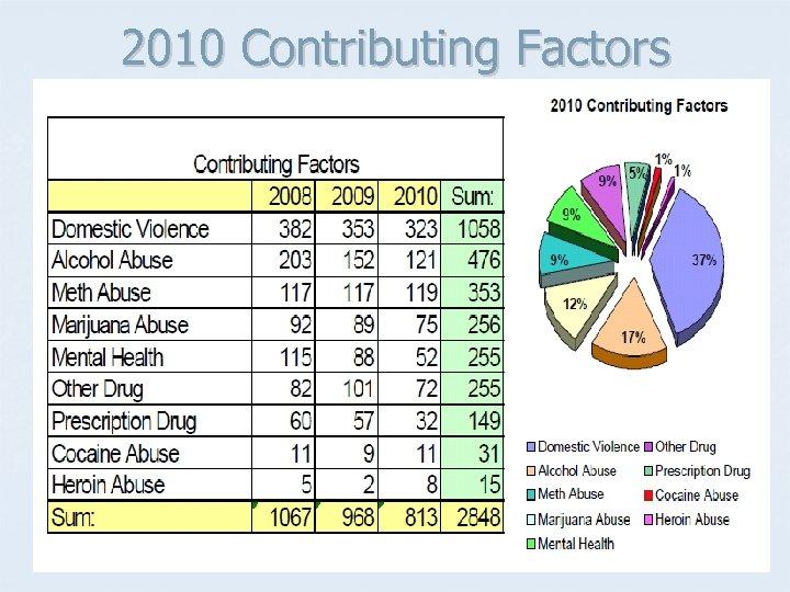 2010 Contributing Factors