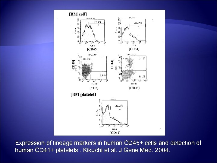 Expression of lineage markers in human CD 45+ cells and detection of human CD