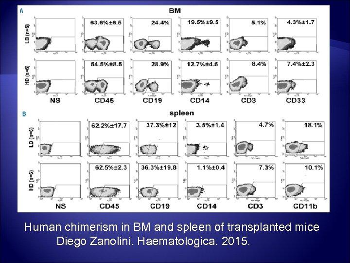 Human chimerism in BM and spleen of transplanted mice Diego Zanolini. Haematologica. 2015.