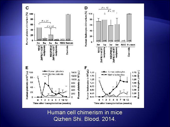 Human cell chimerism in mice Qizhen Shi. Blood. 2014.