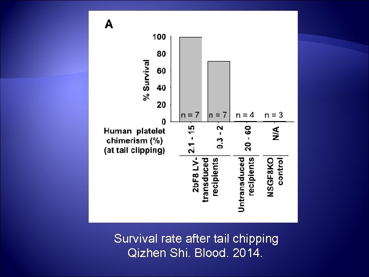 Survival rate after tail chipping Qizhen Shi. Blood. 2014.