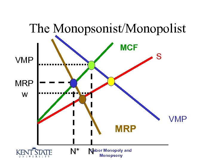 The Monopsonist/Monopolist MCF VMP S MRP w MRP N* Labor Monopoly N Monopsony and