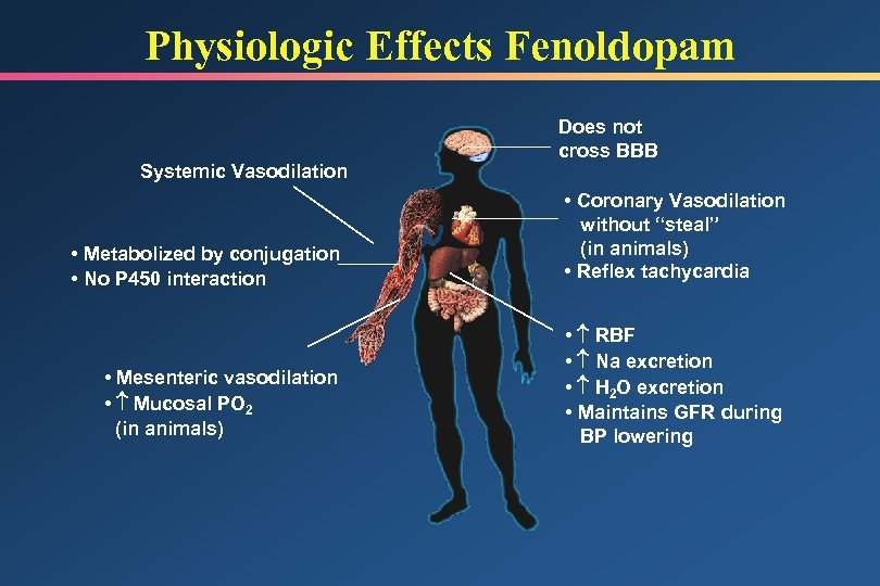 Physiologic Effects Fenoldopam Systemic Vasodilation Does not cross BBB • Metabolized by conjugation •