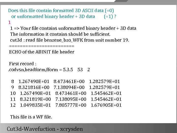 Does this file contain formatted 3 D ASCII data (=0) or unformatted binary header