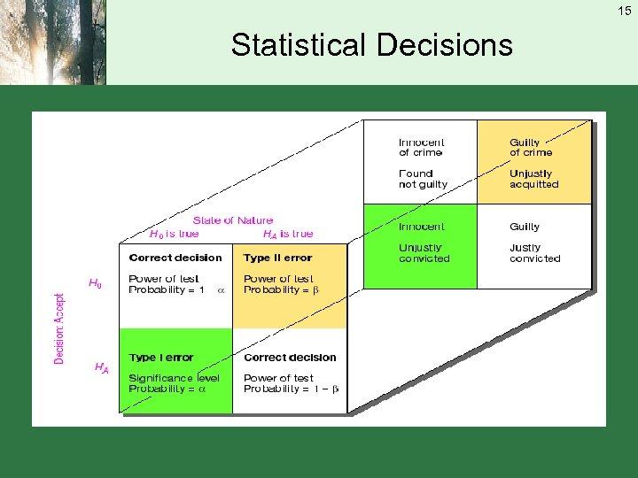15 Statistical Decisions