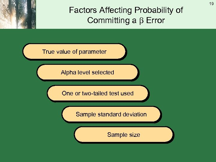 Factors Affecting Probability of Committing a Error True value of parameter Alpha level selected