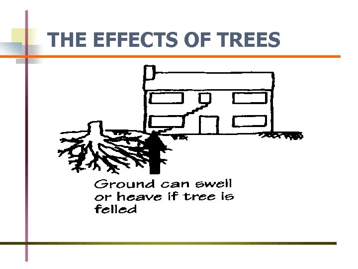 THE EFFECTS OF TREES