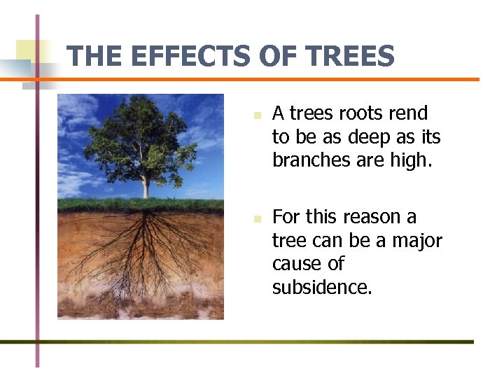 THE EFFECTS OF TREES n n A trees roots rend to be as deep