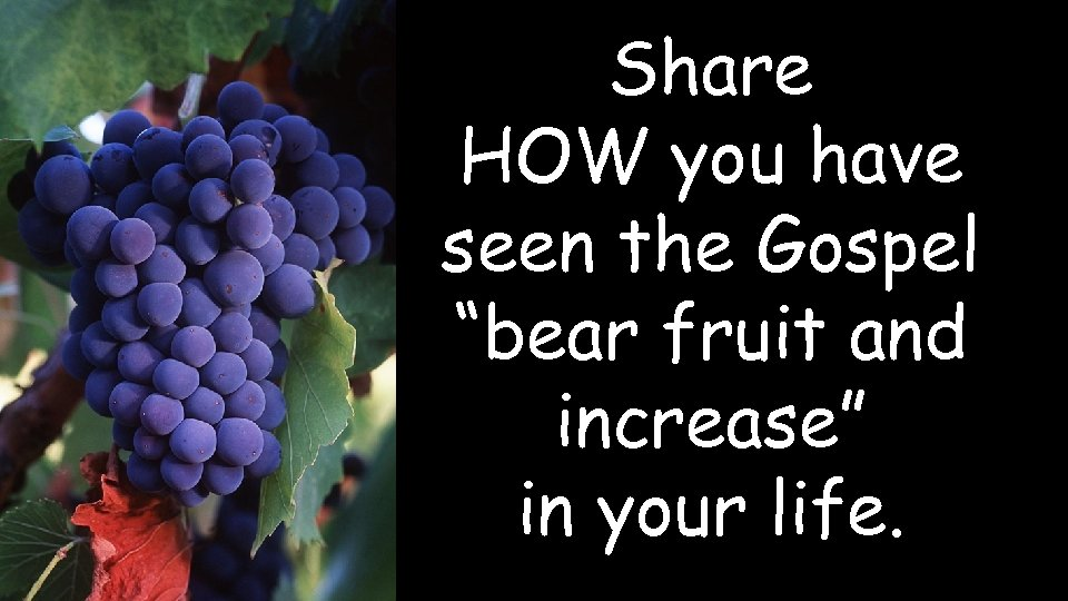 """Share HOW you have seen the Gospel """"bear fruit and increase"""" in your life."""