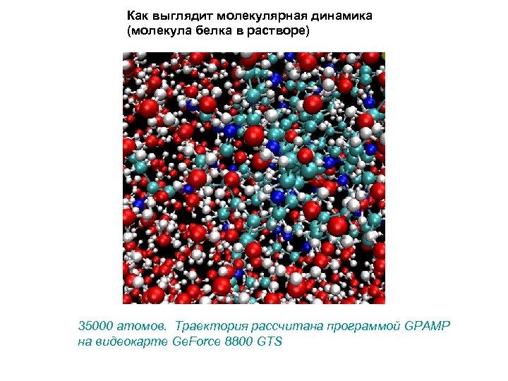 Как выглядит молекулярная динамика (молекула белка в растворе) 35000 атомов. Траектория рассчитана программой GPAMP