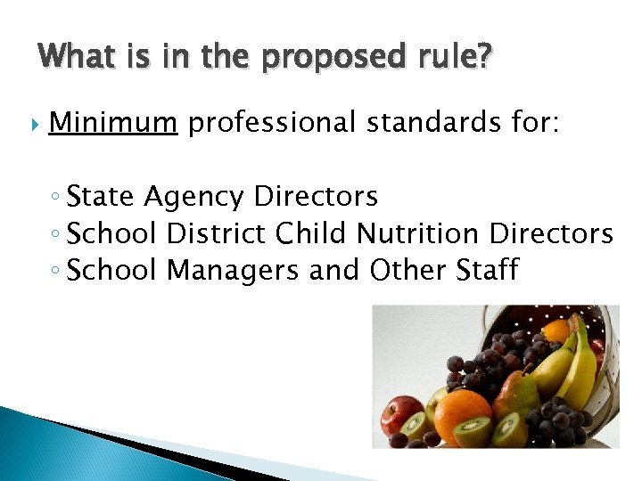 What is in the proposed rule? Minimum professional standards for: ◦ State Agency Directors