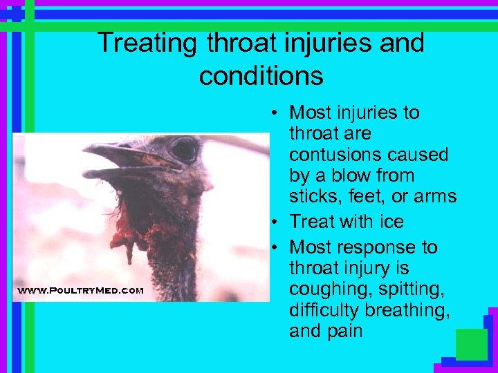 Treating throat injuries and conditions • Most injuries to throat are contusions caused by