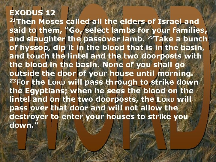 EXODUS 12 21 Then Moses called all the elders of Israel and said to