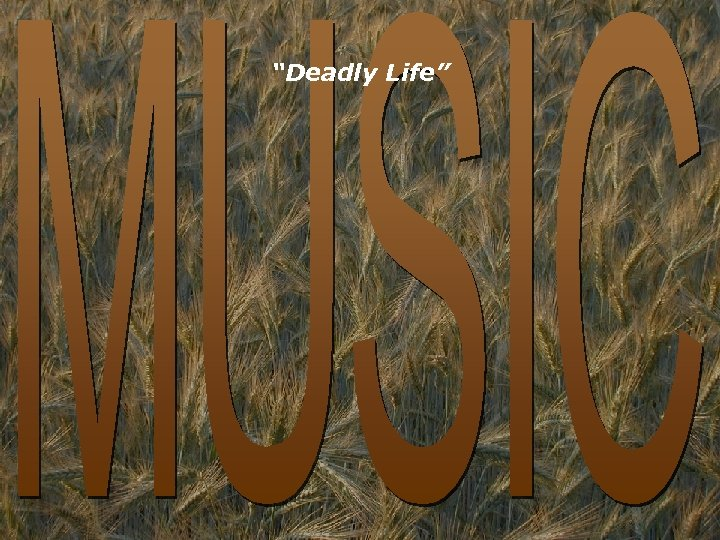 """""""Deadly Life"""""""