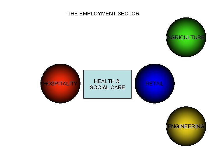 THE EMPLOYMENT SECTOR AGRICULTURE HOSPITALITY HEALTH & SOCIAL CARE RETAIL ENGINEERING