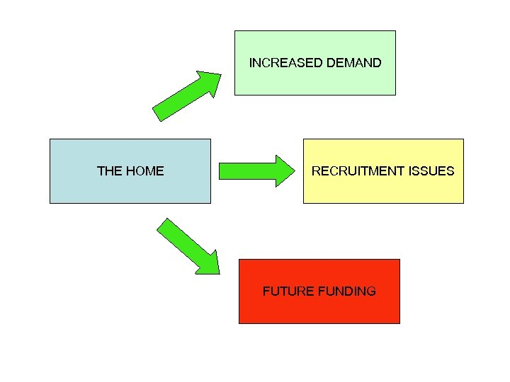 INCREASED DEMAND THE HOME RECRUITMENT ISSUES FUTURE FUNDING