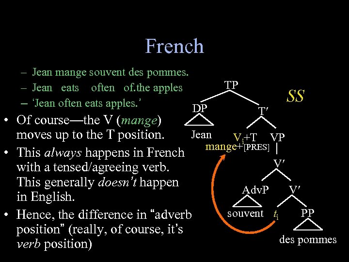 French – Jean mange souvent des pommes. – Jean eats often of. the apples