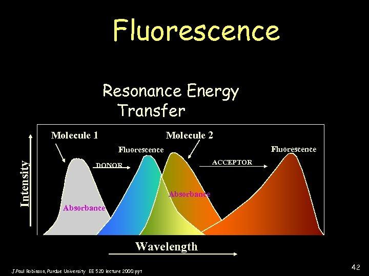 Fluorescence Resonance Energy Transfer Molecule 1 Molecule 2 Fluorescence Intensity Fluorescence ACCEPTOR DONOR Absorbance