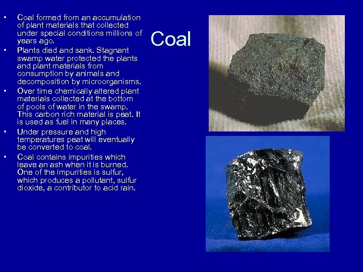 • • • Coal formed from an accumulation of plant materials that collected
