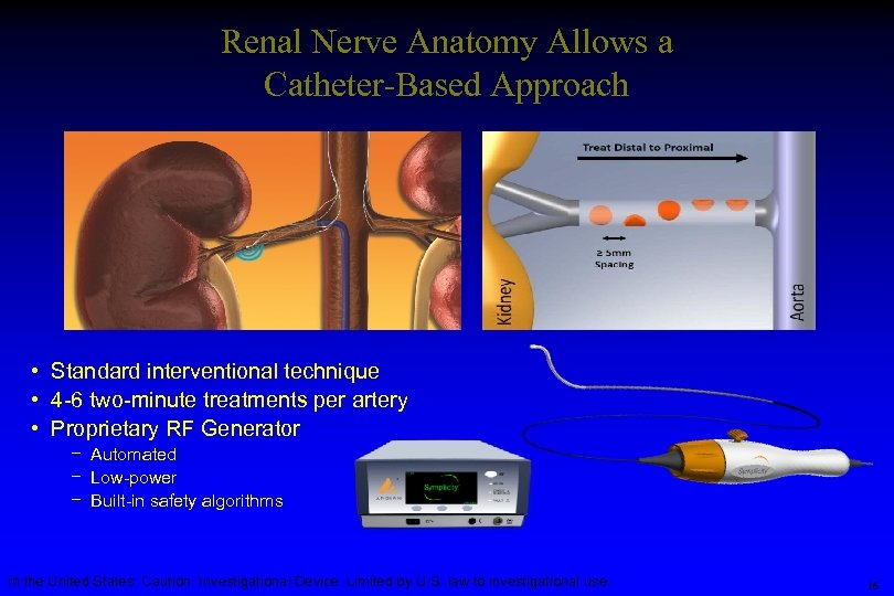 Renal Nerve Anatomy Allows a Catheter-Based Approach • Standard interventional technique • 4 -6