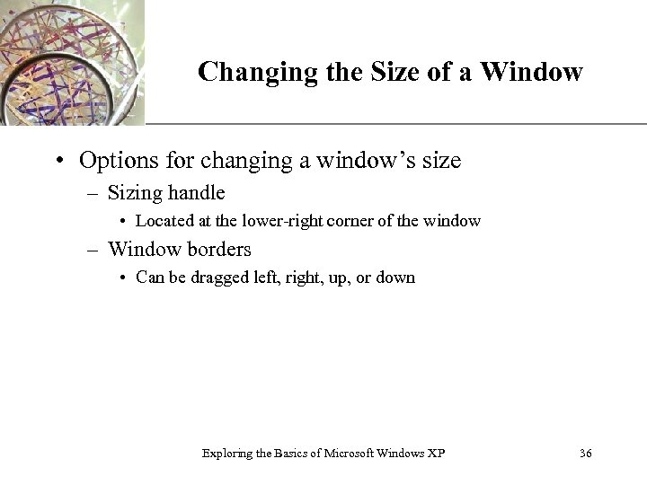Changing the Size of a Window XP • Options for changing a window's size