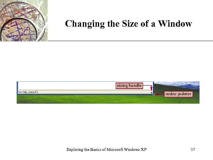 Changing the Size of a Window Exploring the Basics of Microsoft Windows XP XP