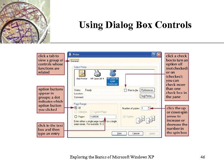 Using Dialog Box Controls Exploring the Basics of Microsoft Windows XP XP 46