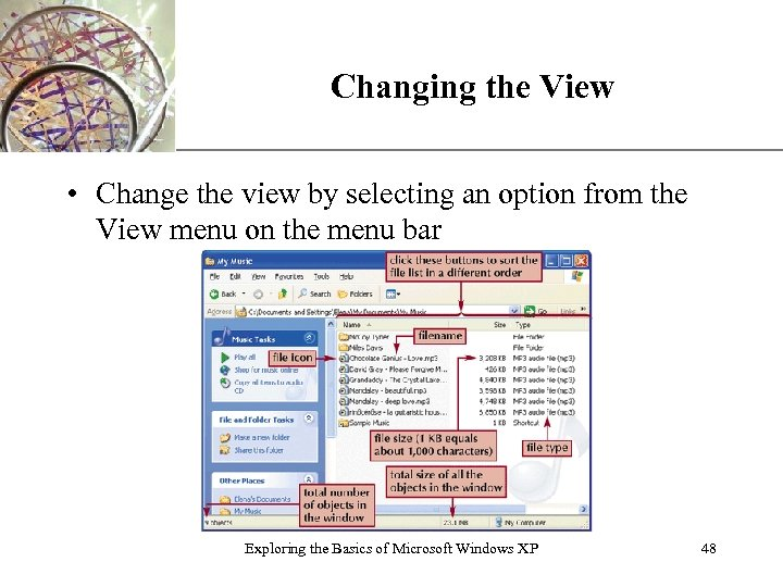 Changing the View XP • Change the view by selecting an option from the