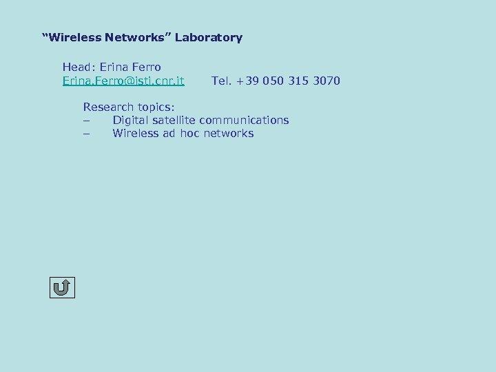 """Wireless Networks"" Laboratory Head: Erina Ferro Erina. Ferro@isti. cnr. it Tel. +39 050 315"