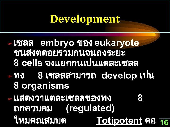 Development เซลล embryo ของ eukaryote ชนสงตดอยรวมกนจนถงระยะ 8 cells จงแยกกนเปนแตละเซลล F ทง 8 เซลลสามารถ develop