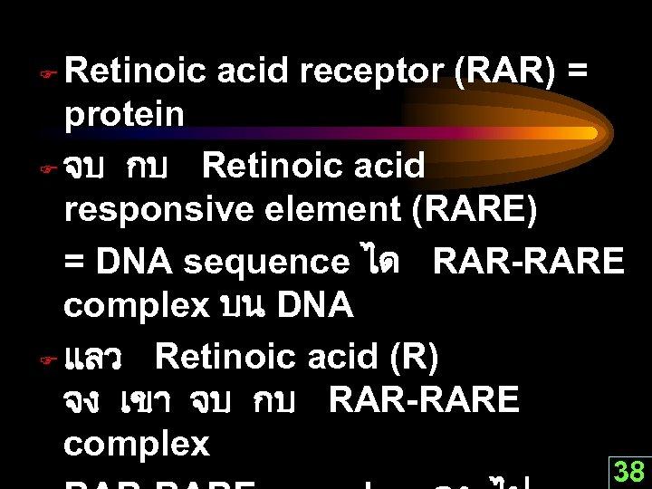 Retinoic acid receptor (RAR) = protein F จบ กบ Retinoic acid responsive element (RARE)