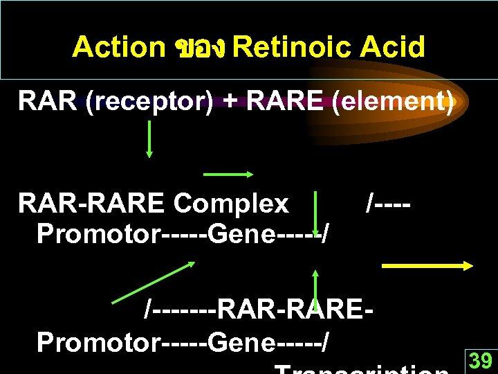 Action ของ Retinoic Acid RAR (receptor) + RARE (element) RAR-RARE Complex Promotor-----Gene-----/ /-------RAREPromotor-----Gene-----/ 39