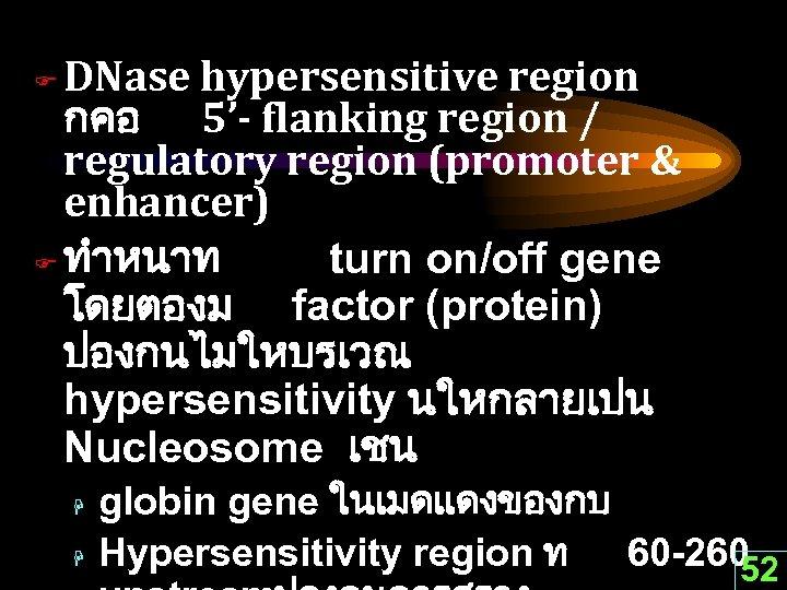 DNase hypersensitive region กคอ 5'- flanking region / regulatory region (promoter & enhancer) F