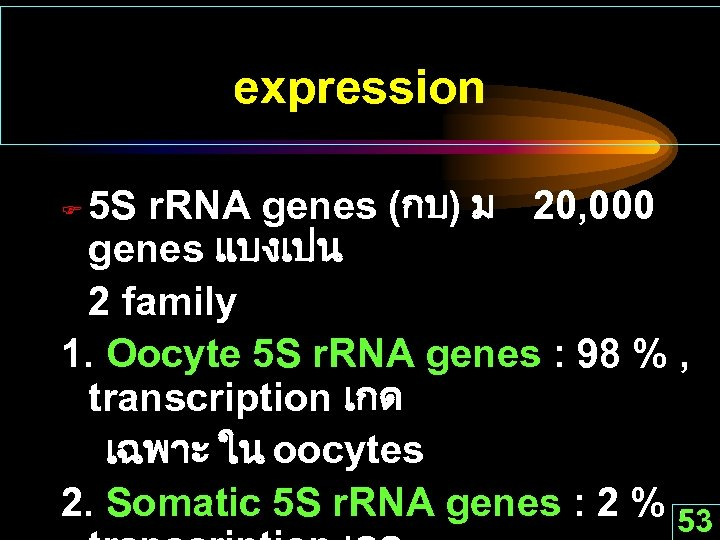expression 5 S r. RNA genes (กบ) ม 20, 000 genes แบงเปน 2 family