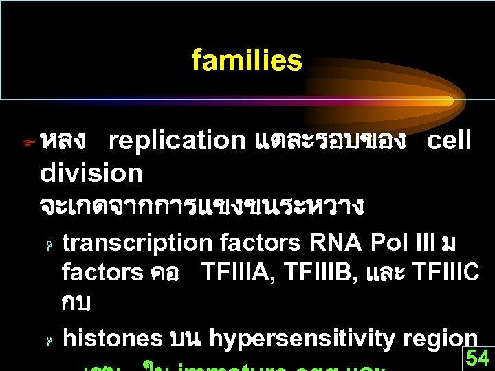 families F หลง replication แตละรอบของ cell division จะเกดจากการแขงขนระหวาง H H transcription factors RNA Pol