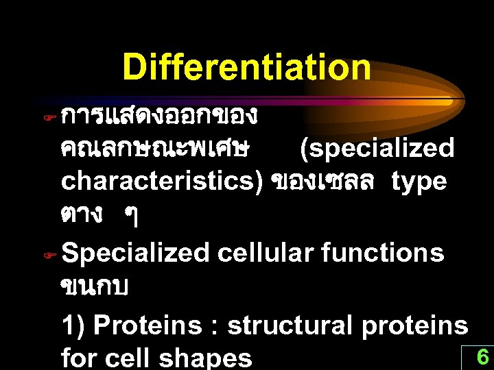 Differentiation การแสดงออกของ คณลกษณะพเศษ (specialized characteristics) ของเซลล type ตาง ๆ F Specialized cellular functions ขนกบ