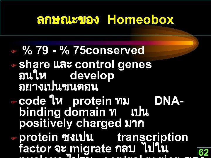 ลกษณะของ Homeobox % 79 - % 75 conserved F share และ control genes อนให