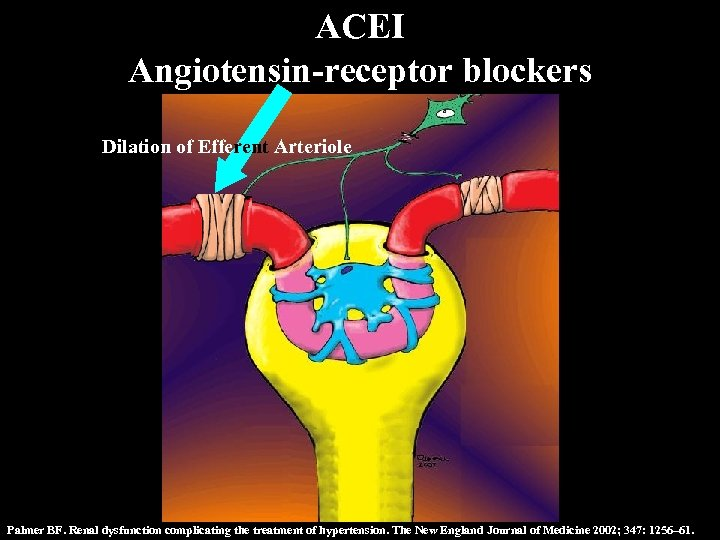 ACEI Angiotensin-receptor blockers Dilation of Efferent Arteriole Palmer BF. Renal dysfunction complicating the treatment