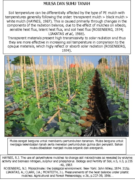 MULSA DAN SUHU TANAH Soil temperature can be differentially affected by the type of