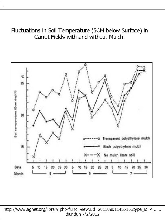 . Fluctuations in Soil Temperature (5 CM below Surface) in Carrot Fields with and