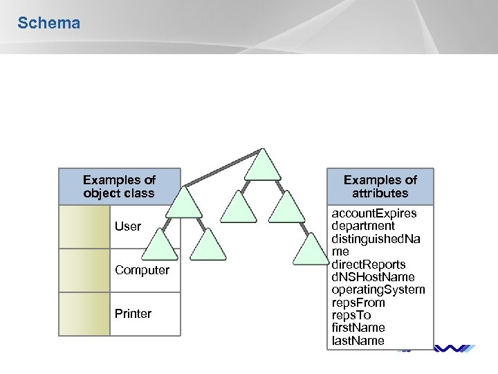 Schema Examples of object class User Computer Printer Examples of attributes account. Expires department