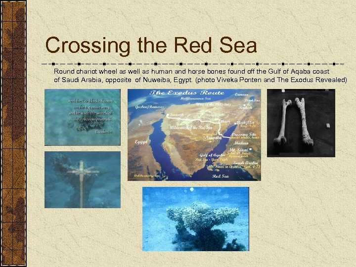 Crossing the Red Sea Round chariot wheel as well as human and horse bones