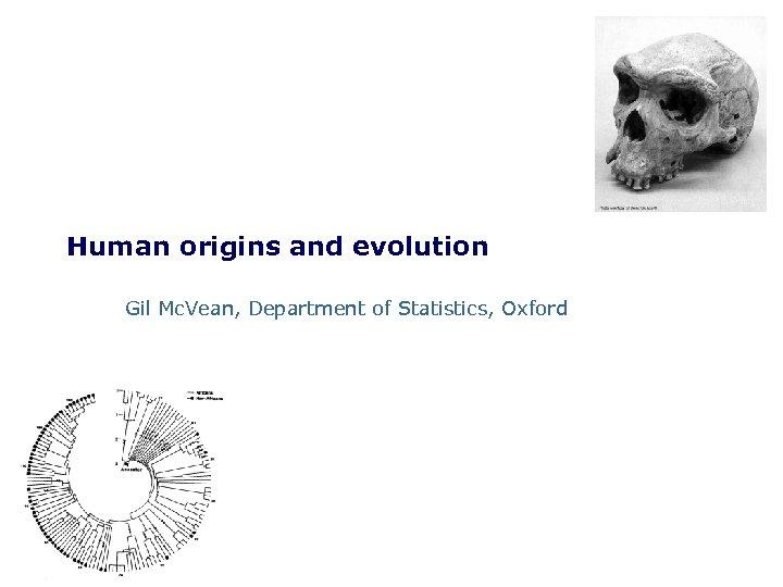Human origins and evolution Gil Mc. Vean, Department of Statistics, Oxford