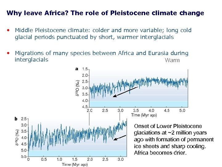 Why leave Africa? The role of Pleistocene climate change • Middle Pleistocene climate: colder
