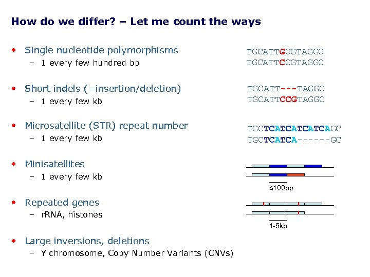 How do we differ? – Let me count the ways • Single nucleotide polymorphisms