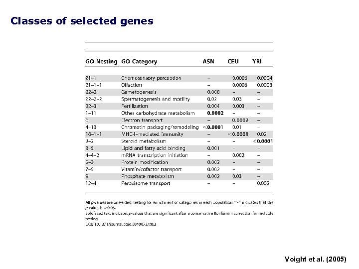 Classes of selected genes Voight et al. (2005)