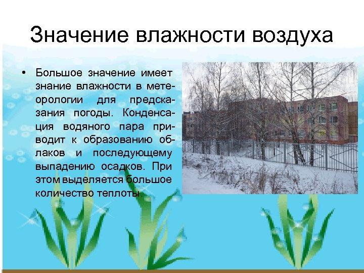Значение влажности воздуха • Большое значение имеет знание влажности в метеорологии для предсказания погоды.