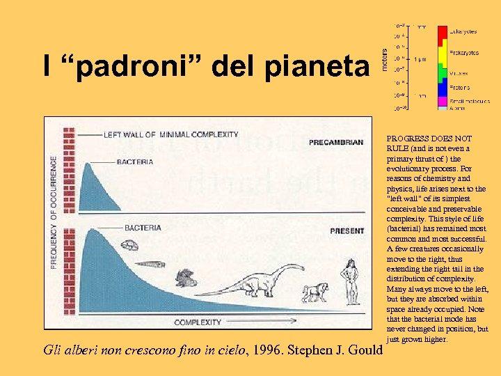 """I """"padroni"""" del pianeta Gli alberi non crescono fino in cielo, 1996. Stephen J."""
